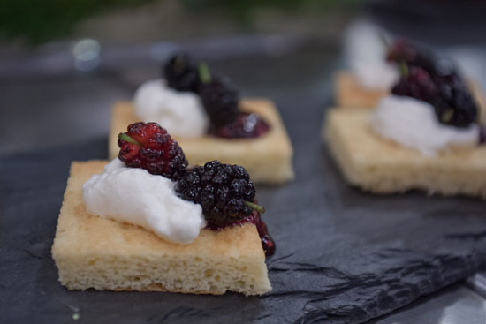 Mulberry Shortcakes
