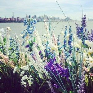 Wildflowers #hudsonriver #nyc #lovely